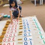 montessori TTDI math